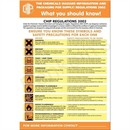 Health Hazards in The Workplace Poster 420x600mm PG23