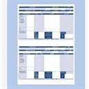 Iris Compatible Payslip 2 Per A4 Sheet Ref FY95 [Pack 1000 Payslips]
